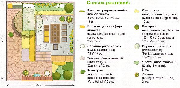 Схема посадок растений во дворе дома 1