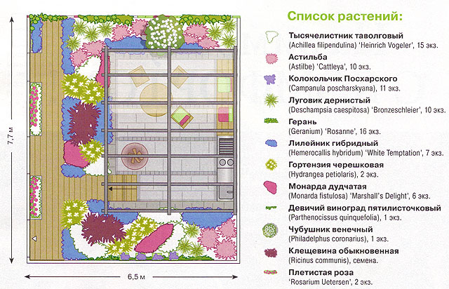 Схема посадок растений во дворе дома 2