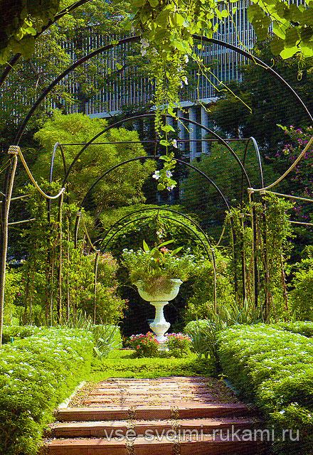 Вазон с цветами и растениями